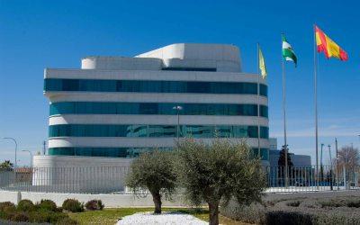 ob_obras_web_sede de la diputacion de Granada 2